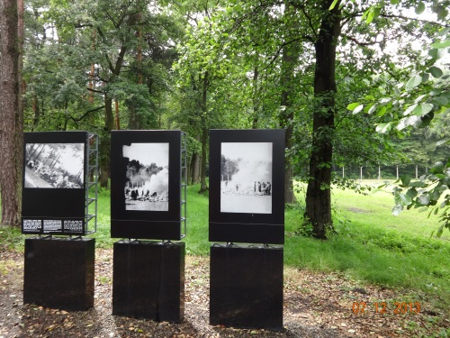 The secret sonderKommando photos. Where the bodies were burned in open air.