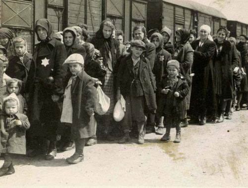 View of the Ramp at Auschwitz-Birkenau Showing the SS Selection of Hungarian Jews USHMM.
