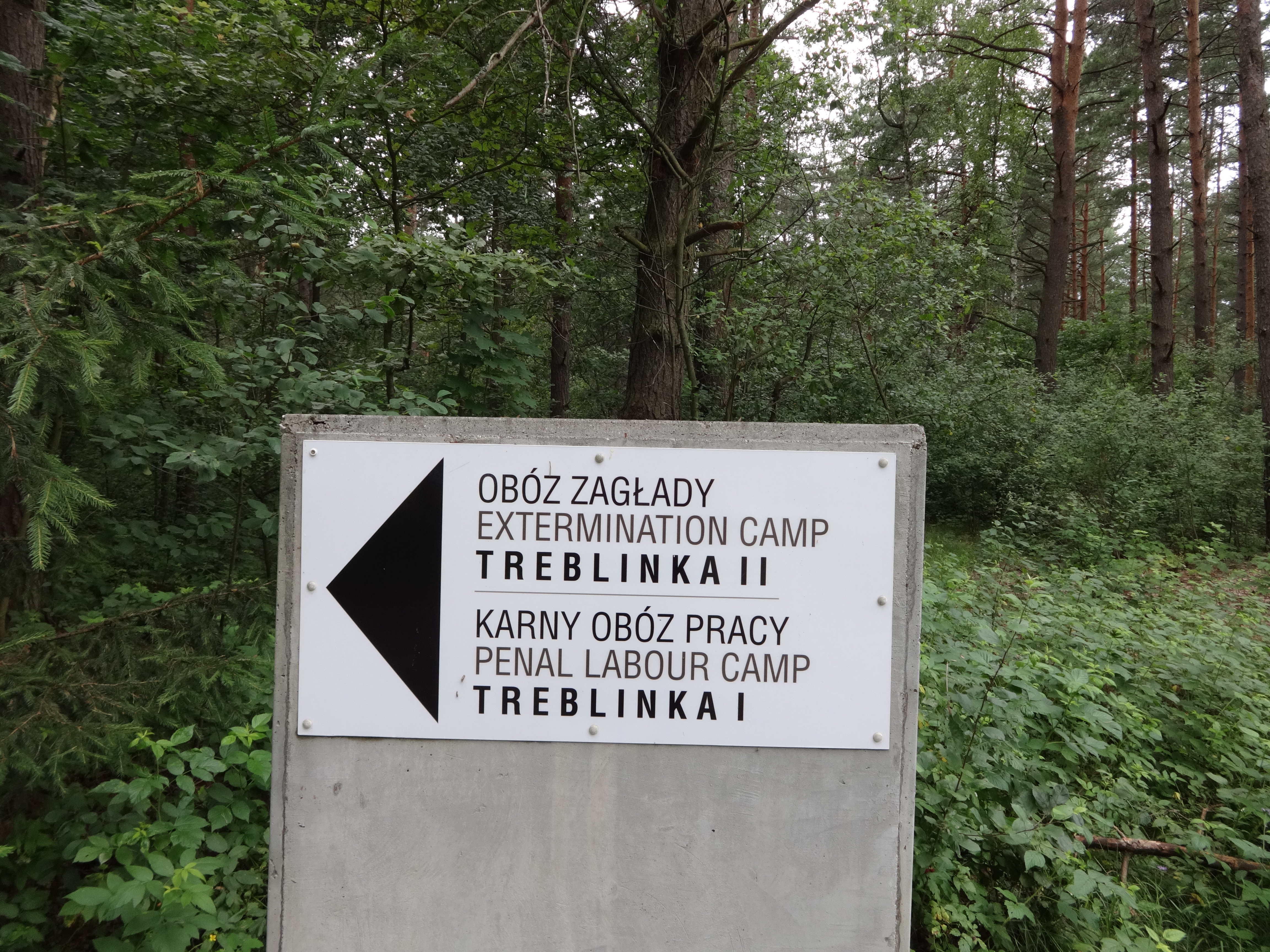 a history of the extermination camp in treblinka Only 2 survivors remain from nazi camp treblinka the treblinka extermination camp in link to one of the most notorious death camps in human history.